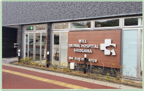ウィル動物病院 塩釜病院